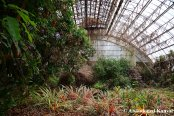 Abandoned Biodome-like Structure