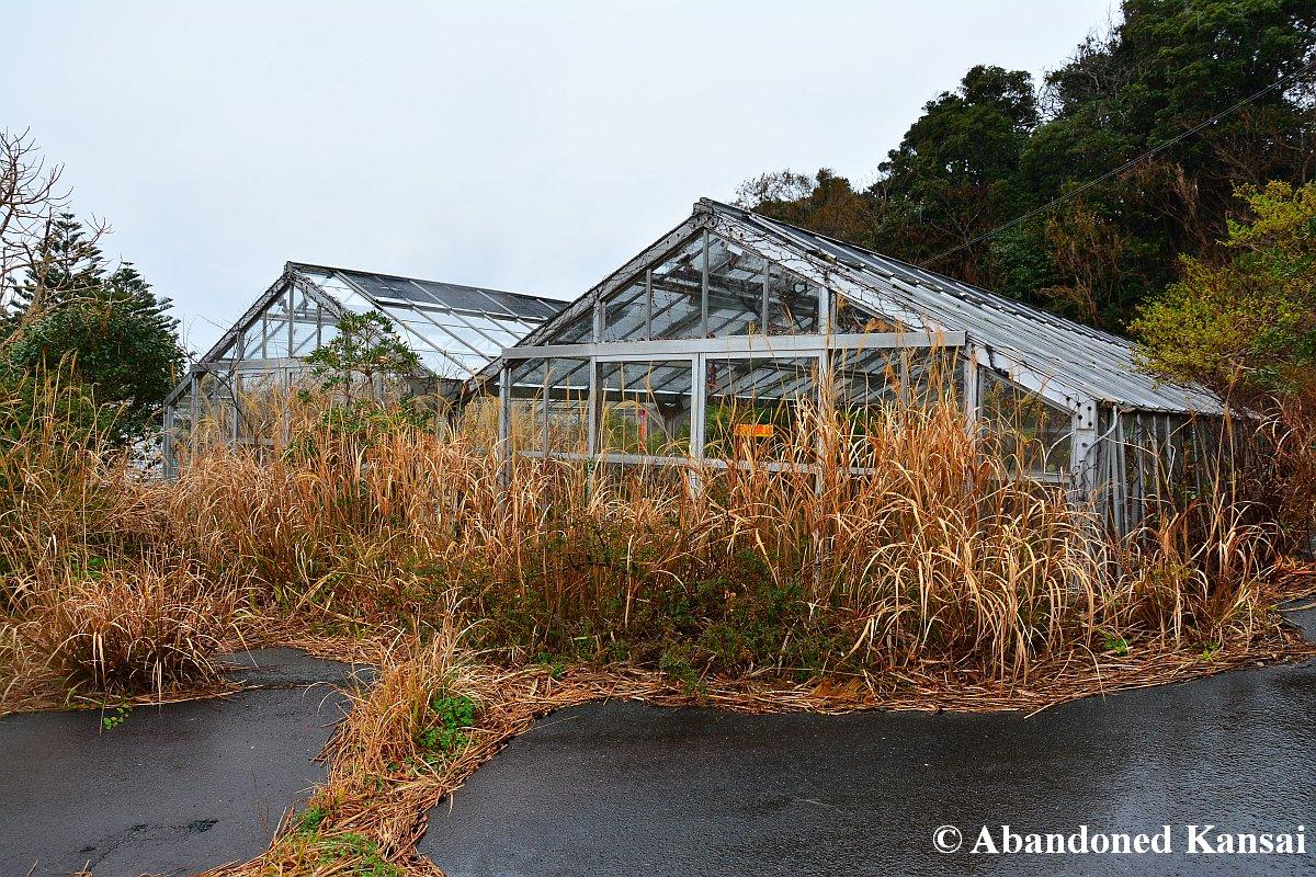 Deserted Greenhouse | Abandoned Kansai