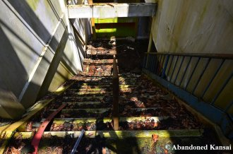 Abandoned Ropeway Staircase