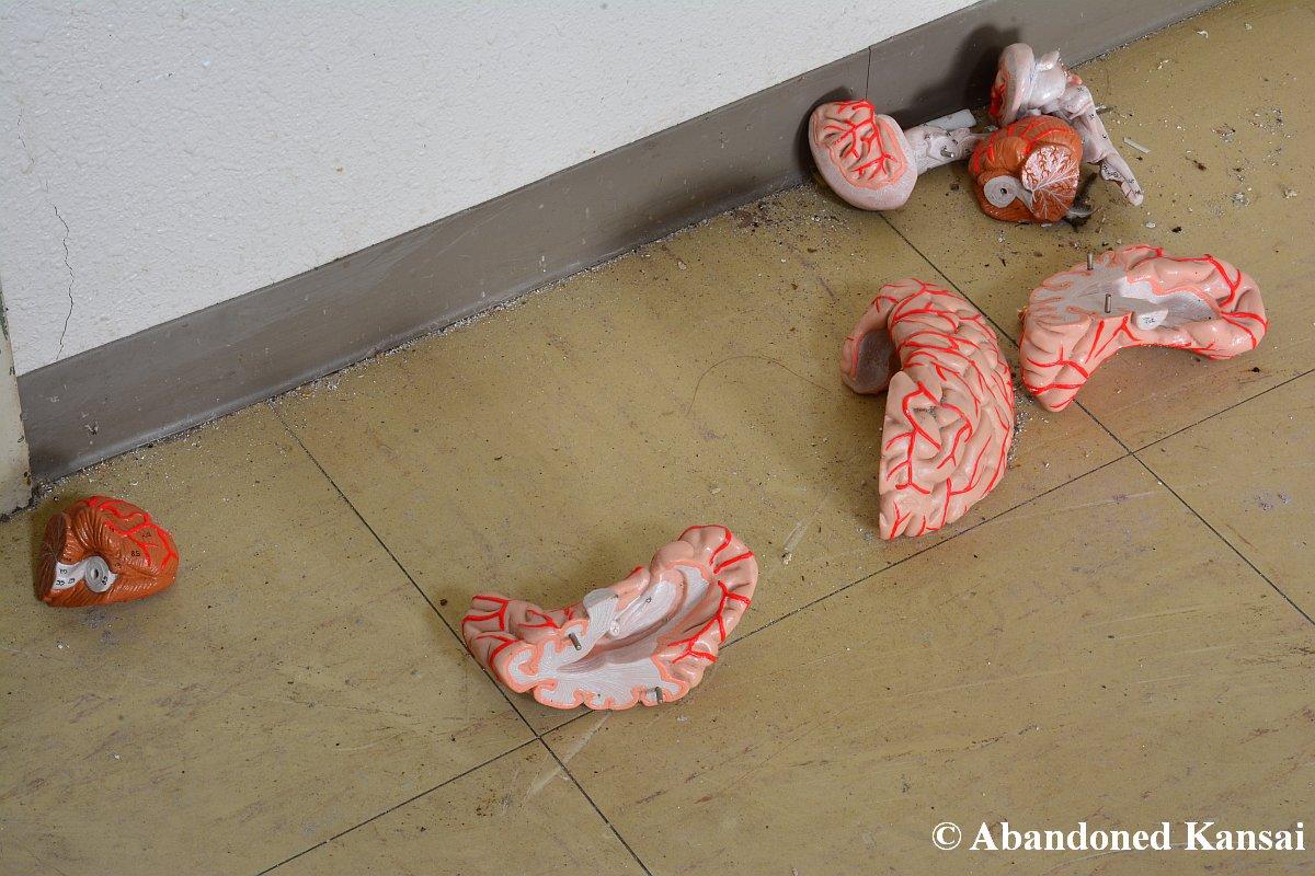 Brain Scattered All Over The Floor Abandoned Kansai