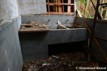 1950s Japan Sinks