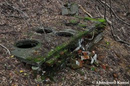 Abandoned Hearth