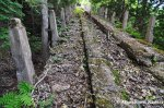 Decaying Cable CarTrack