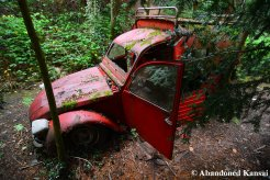 Abandoned French Car