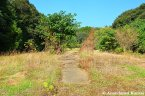 Abandoned Garden Park
