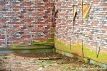 Brick Wallpaper PeelingOff