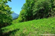 Hiking In Oita