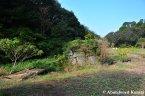 Kanto Flower Park