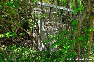 Overgrown Lavatory