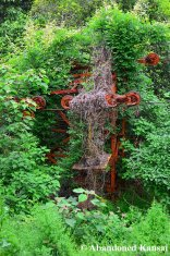 Orange Overgrown Lift Pillar