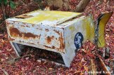 Abandoned Bireley's Cooler