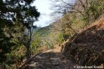 Main Road To The AbandonedMine