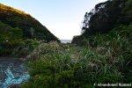 Overgrown Namegawa Island