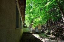 Abandoned Wooden School