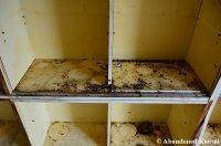 Disgusting Kitchen Cabinet