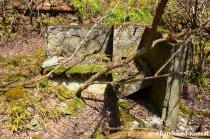 Forgotten Concrete Remains