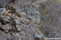 Mining Railway With Rock Fall