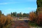 Demolished Niigata RussianVillage
