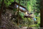 Abandoned Japanese House In The Middle Of The Woods