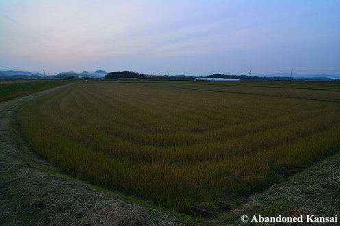 Japanese Countryside At Dusk