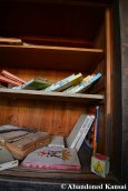 Abandoned Book Shelf