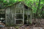 Abandoned Glass GreenHouse