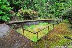 Empty Trout Pond