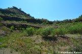 Nature Reclaims Quarry