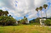 Peafowl Park