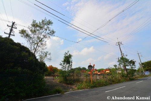 The Removal Of The Abundant Vegetation Has Begun