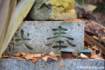 carved-chinese-characters