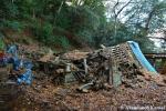 collapsed-shrine