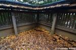 corner-of-a-shrine