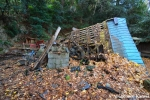 damaged-shrine