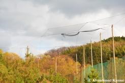 Driving Range Nets