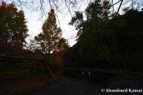 abandoned-pool-at-dusk