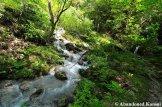 bunagatake-hiking-trail