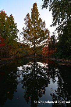 deserted-pool-in-autumn