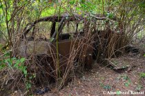 abandoned-japanese-car-beyond-repair
