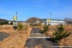 Fake Train Crossing