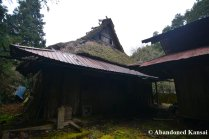 Thatched Japanese Roof