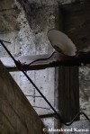 Abandoned Haboro CoalMine