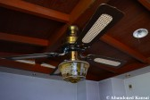 Abandoned Ceiling Fan