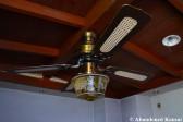 Abandoned Ceiling Fan