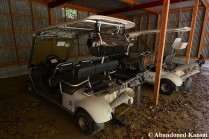 Japanese Golf Carts