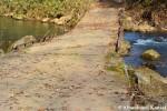 Delapidated Bridge