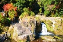 Fall In Kagoshima