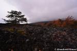 Yakehashiri Lava Field