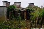 Overgrown Restaurant Pods