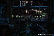 Abandoned Chicken Cages